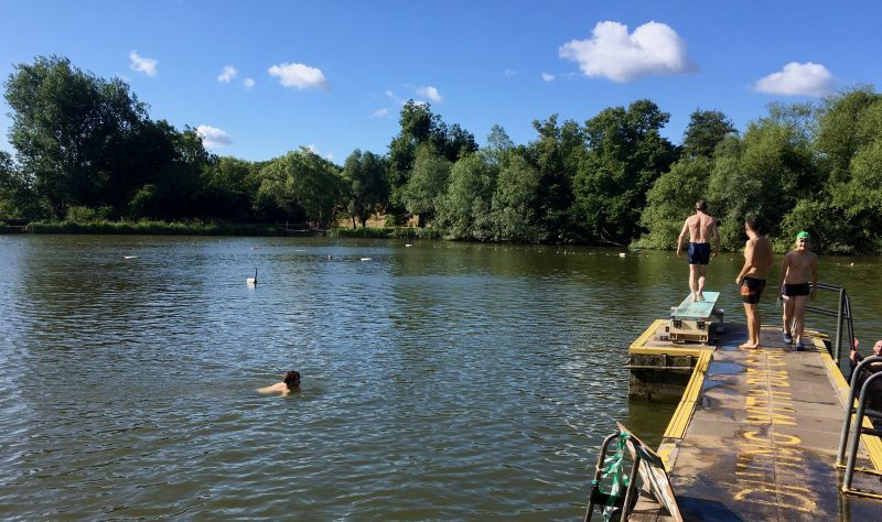 Hampstead Pond: Taking the plunge